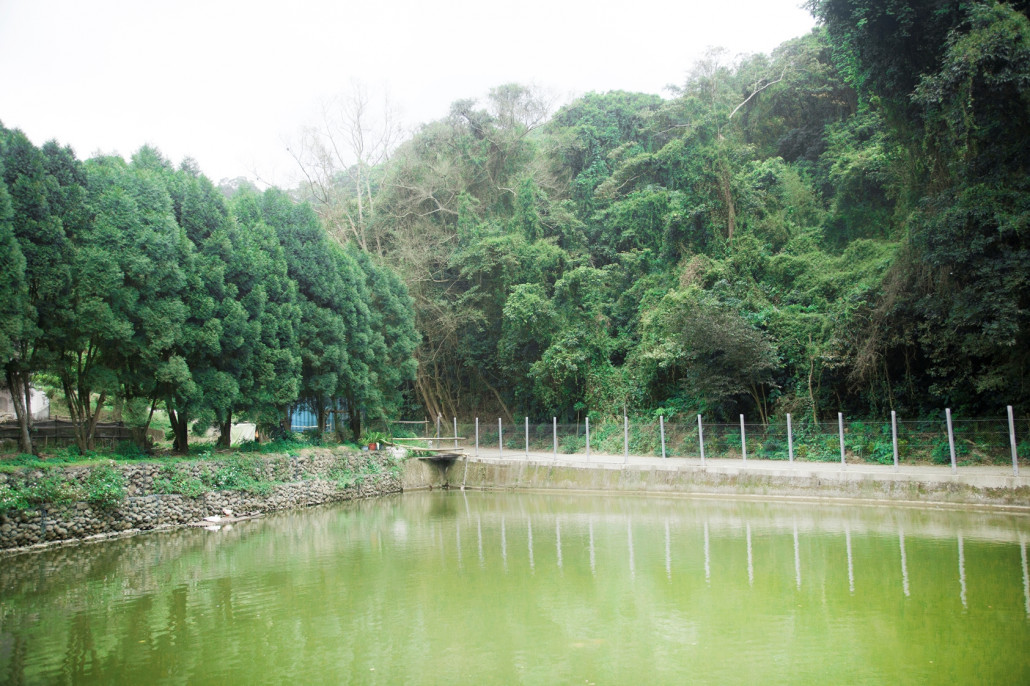 A pond preserved for making paper